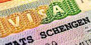 Заполнение электронной анкеты на визу шенген