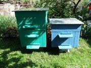 Продам пчелиный улей.