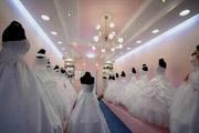 свадебный бизнес 15000