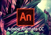 Курсы Adobe Animate