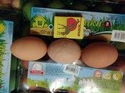 Яйца домашние,  крупные,  свежие