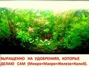 Удобрения - микро,  макро,  калий,  железо растениям. ПОЧТОЙ вышлю--
