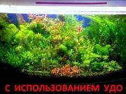 Удобрения - микро,  макро,  калий,  железо растениям. ПОЧТОЙ вышлю-======