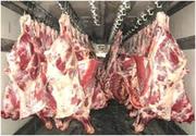 Только оптовые поставки мясо-ГОВЯДИНА от производителя.