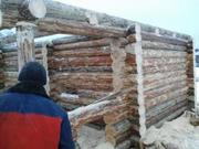 Строительство деревянных домов,  бань,  беседок.