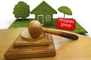 Сопровождение на аукционе по продаже недвижимости