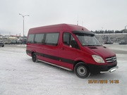 Автобус Mercedes-Benz Sprinter,  2008