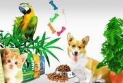 широкий ассортимент товаров для животных по доступным ценам