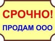 Готовое ООО (2017 г.,  УСН,  без долгов)