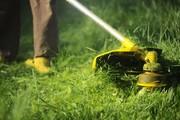 Покос травы,  стрижка газона